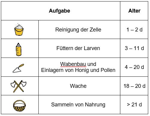 Ungewöhnlich Bartending Beispiel Ideen - Entry Level Resume Vorlagen ...